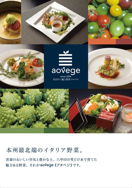 aovege_2_A3